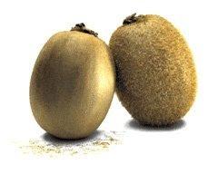 hair balls hair removal kiwi